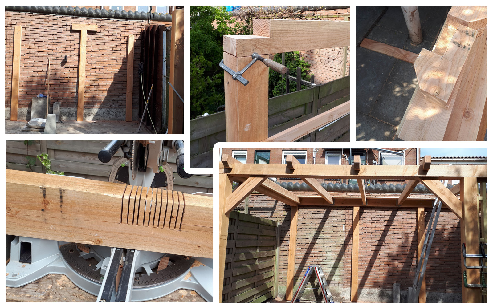 TimBer Project 3